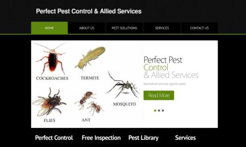 Our Work Perfect Pest Control